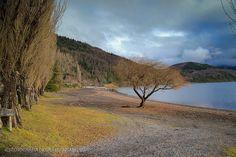 Colores de Choshuenco - Lago Panguipulli (Chile)