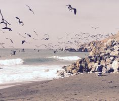 Pacifica #pacificnorthwest #california #mytravel