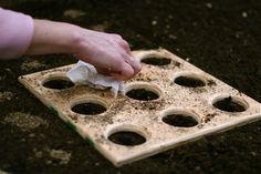 Square Foot Gardening Templates | Chiot's Run