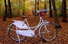 RETRO BIKE (łowca: Bajker), do kupienia w DecoBazaar.com