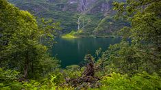 The Lush Fjord View - Looking out from the green lush forest towards a waterfall running into the deep emerald green fjord outside Gudvangen, Norway. Emerald Green, Norway, Lush, The Outsiders, Waterfall, Landscapes, Deep, River, Running