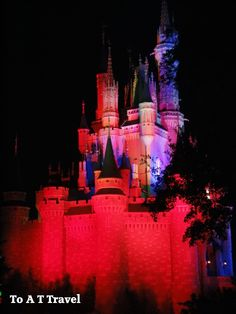 Mickey's Not So Scary Halloween Party: Why You Should Make Plans Now to Go! Disney World Vacation, Disney Trips, Walt Disney, Scary Halloween, Halloween Party, Disney Magic Kingdom, Cinderella Castle, My Happy Place, Aunt