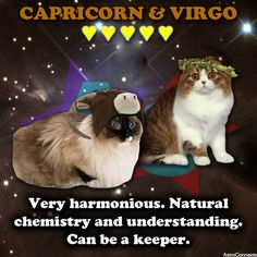 Virgo man dating capricorn woman