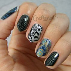 zebra, snakeskin and peacock nail art skittles by Craftynail - MoYou London plates
