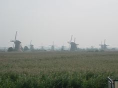 this is Kinderdyke, Nederlands.  These are all working Molen.