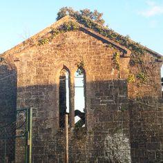 Delvin Castle Westmeath