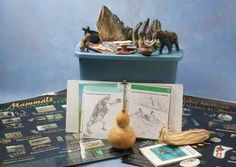 People and Animals from Illinois' Past Trunk on loan to Kaskaskia College Library from Illinois Department of Natural Resources