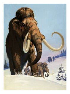 Mammoths from the Ice Age, 1969