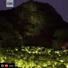 "On CNN!  @shiseido presents #チームラボ #かみさまがすまう森のアート展  #teamLab: A Forest Where Gods Live presented by @shiseido @mifuneyamarakuen ・・・ #thankyou #Repost @cnn (@get_repost) ・・・ Tokyo-based teamLab specializes in combining art with technology to create unique, immersive experiences. Their latest exhibition, ""A Forest Where Gods Live,"" uses lights, projections, sensors and sound to turn nature into a work of art. (🎥 by @teamlab_news and @inoko.teamlab)"