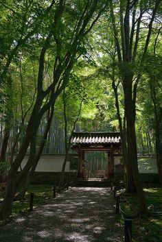 Jizo-in, Kyoto, Japan