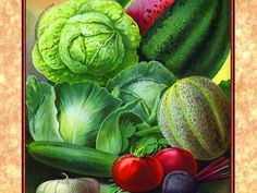 4 Heirloom, Non-GMO Seed Sources for Foodies, Kitchen Gardeners, and Chefs