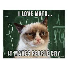 The    world's grumpiest cat! 40+ Funniest Grumpy Cat Memes Pics #memes #cats    #grumpycat