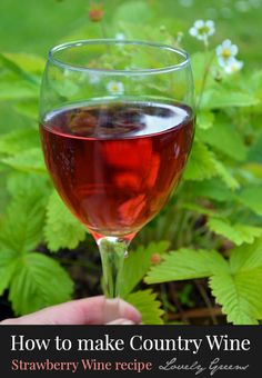 Guide on how to make homemade wine using fruit, berries, herbs, and vegetables. Includes recipes for sweet Strawberry wine and floral Rose Petal wine Homemade Wine Recipes, Kahlua Recipes, Homemade Liquor, Homemade Alcohol, Homemade Kahlua, Drink Recipes, Homemade Moonshine, Cocktail Recipes, Strawberry Wine