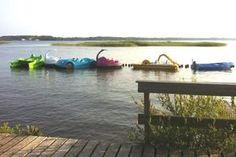 Base de Loisirs - Aqua loisirs France / Activités nautiques / Activités / Office de Tourisme / Parentis-en-Born - Parentis-en-Born