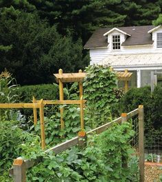 A Wooden, Tripods Or Trellises For A Small Garden