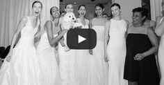 Brides: Watch Amsale's Spring 2016 Bridal Runway Show