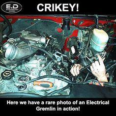 Engineered Diesel Electrical Gremlin Meme  #diesel #truck #meme #engineereddiesel #engineered #electrical #gremlin #crikey