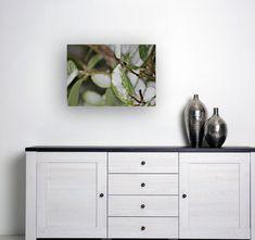 Printable Wall Art, Wall Art Decor, Close Up, Leaves, Space, Link, Interior, Prints, Shop