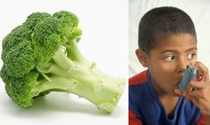 How eating BROCCOLI can help asthma sufferers
