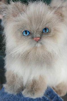 OOAK Princess Rag Doll Cat by Kimbearlys Originals