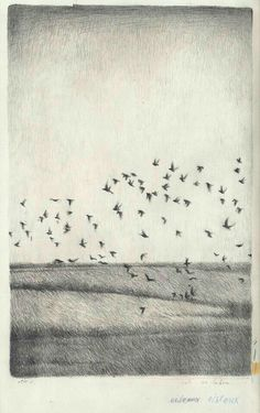 Winter by Joanna Concejo Landscape Drawings, Landscape Paintings, Landscapes, Vogel Illustration, Art Sketches, Art Drawings, Minimal Drawings, Art Plastique, Bird Art