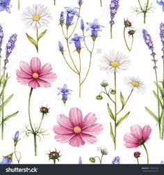 Wild flowers illustration. Watercolor seamless pattern