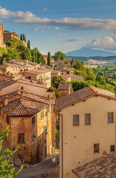 Examine the Countryside Decorated with Majestic Gardens & Vineyards during Florence to Siena and The Chianti Area Tour in Luxurious Mercedes Vehicles. Toscana, The Places Youll Go, Places To See, Italian Summer, Northern Italy, Travel Aesthetic, Summer Aesthetic, Italy Travel, Italy Vacation