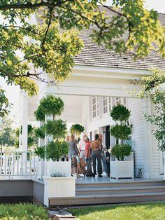 Google Image Result for http://www.veranda.com/cm/veranda/images/Sr/carolyn-roehm-0508-2_md.jpg
