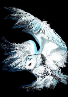 Snowy Owl by Hayloumac on DeviantArt