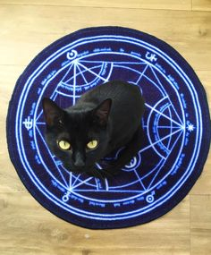 Hold on, lemme just use this Transmutation Circle to summon a new cat. Only human transmutation is taboo, right?