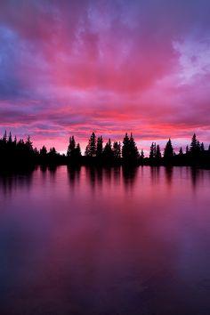 Light on the Horizon (by Sarah Marino)