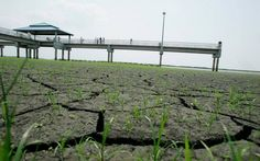 Eastern Miami-Dade and Broward counties have fallen into extreme drought conditions, water managers warned Thursday.