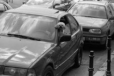 PhotoTeam Romania: Featured by PhotoTeam: Mihai Zamfiroiu