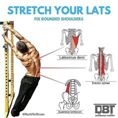 stretch your lats fix rounded shoulders - Fitness Inspiration Best Weight Loss Foods, Quick Weight Loss Diet, Best Weight Loss Plan, Weight Loss Secrets, Weight Loss Help, Losing Weight, Healthy Breakfast For Weight Loss, Healthy Weight, Healthy Eating