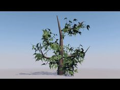 Growing a tree using hair in Cinema 4D - Tutorial Part 1 - YouTube