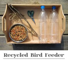 Make a fun recycled bird feeder! A great way to get to know your backyard birds...