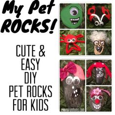 My Pet Rocks! Pet Rock Craft for Kids
