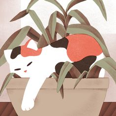 JEANNIE PHAN ILLUSTRATION BLOG — Calico in Potted Plant Illustration by Jeannie...