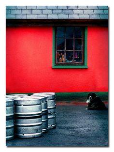 ballynamult, county waterford, via Flickr.