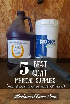 5 Goat Medical Supplies - Always Keep These on Hand You want your goats to always be healthy, but there will be times when your goats get sick. Find out what goat medical supplies you should have on hand. Cabras Boer, Goat Pen, Goat Care, Nigerian Dwarf Goats, Raising Goats, Goat Farming, Baby Goats, Medical Equipment, Equipment Cases