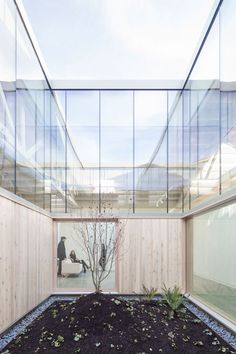 Bowstring Truss House | Works Partnership Architecture (W.PA) | Archinect