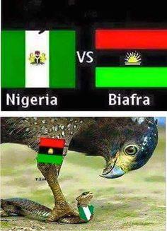 The Biafra Times: BIAFRA: NIGERIA – AN ASTOUNDING FAILURE