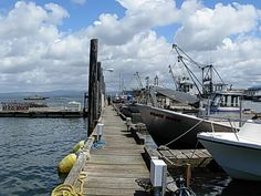 Down at the docks on the coast of Oregon..
