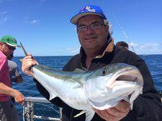 10kg kingfish
