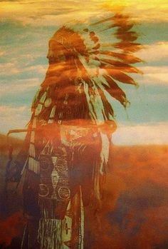 native instincts