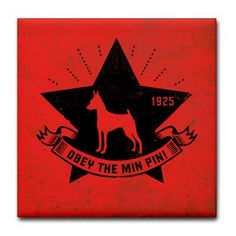Obey the Min Pin!
