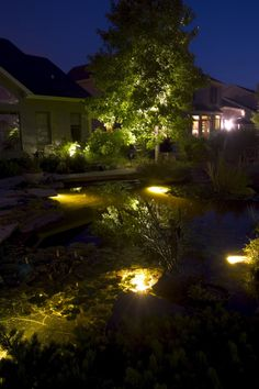 Aquascapes / Landscape Lighting Combination - Very nice lighting used in this water feature!