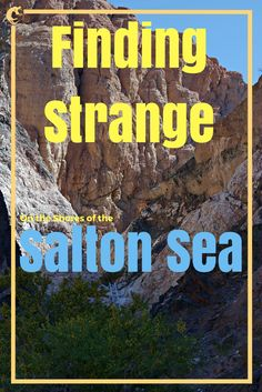 Finding Strange on the Shores of the Salton Sea