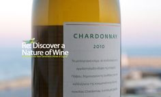 Chardonnay GrapeTrip - wine discovery Cyprus
