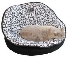 The Petasan Belmondi is a luxuriously designed bed that your cat just totally fall in love with! This fancy bed is a two part medium bed structured similar to the shape of the papasan chair. This is the perfect lounging furniture and bed for your pet, designed for ultimate comfortness. The bed is suitable for a large cat or small dog. Handmade and proudly manufactured in Australia. The Petasan Belmondi is available in one size: 70x40cm.